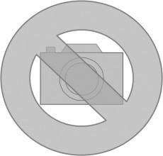FERMAX P1MS Postschloß z.Einbau mit goldfaerbiger Rosette