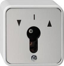 GIRA 014430 chlüsselschalter 2pol WG AP grau