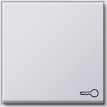 GIRA 028766 Wippe Symbol Schlüssel TX_44 rws