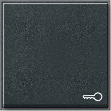GIRA 028767 Wippe Symbol Schlüssel TX_44 ant