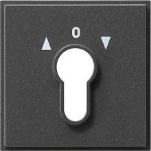 GIRA 066467 Abdeckung Schlüsselschalter TX_44 ant